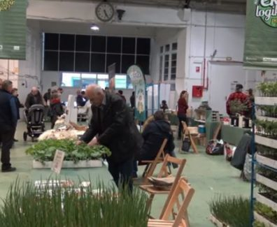 Feria Ecológicia